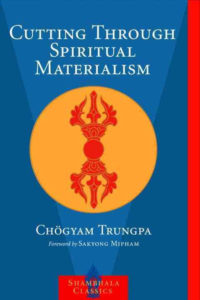 Meditation Book Cutting Through Spiritual Materialism