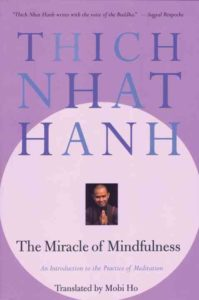 Meditation Book The Miracle of Mindfulness